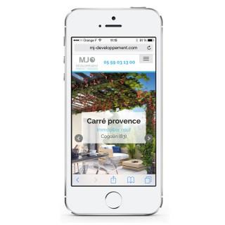 mjdev-mobile2015